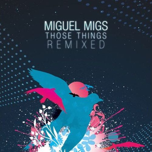 Miguel Migs - Those Things Remixed (2008)