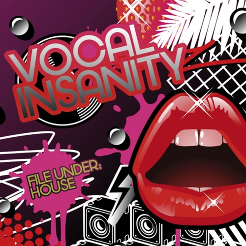 VA - Vocal Insanity File Under House (2008)