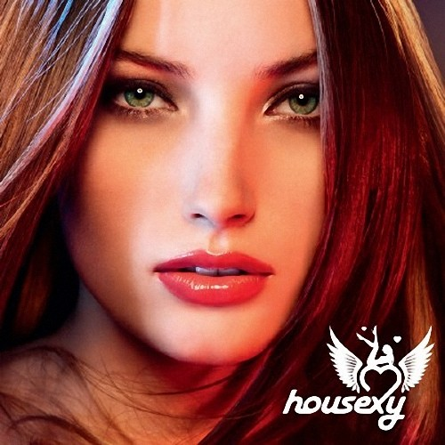 VA - Housexy 2009: mixed by Mobin Master and Those (2009) 2хCD