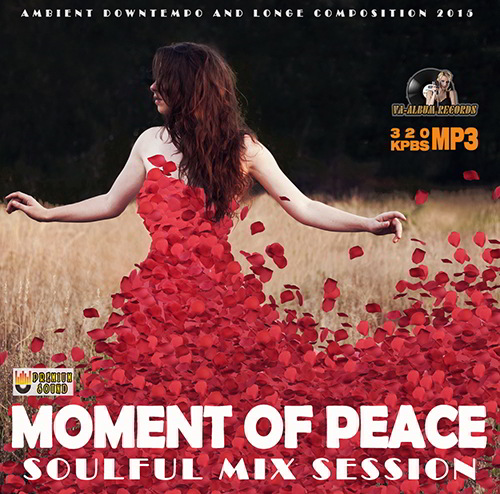 Moment Of Peace: Soulful Mix Session (2015)