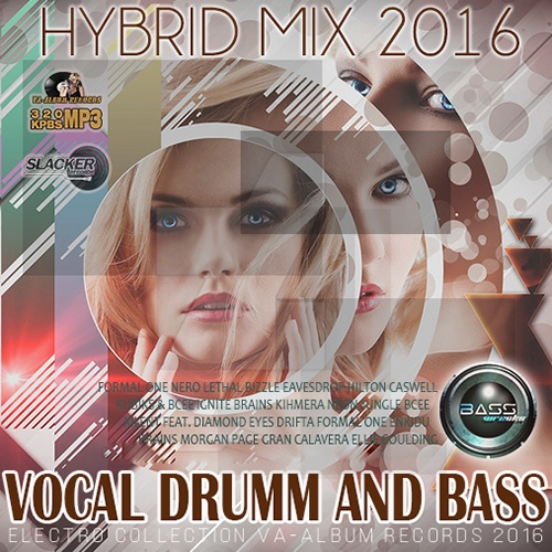Vocal Dumm And Bass (2016)