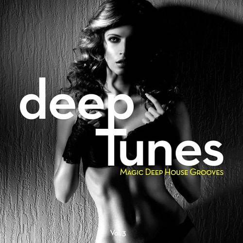 Deep Tunes - Magic Deep House Grooves Vol.3 (2016)