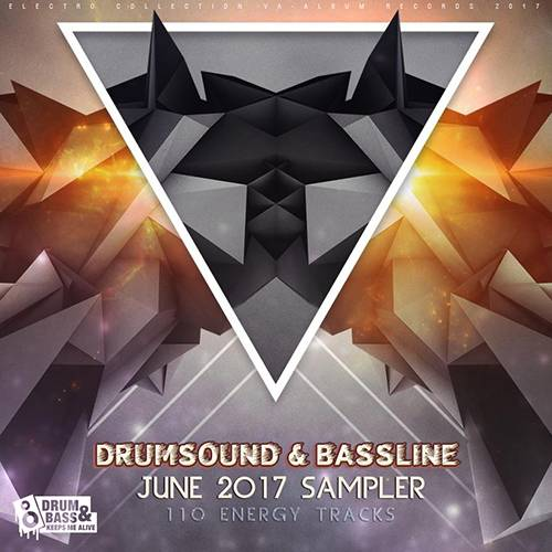 Drumsound And Bassline Sampler (2017)