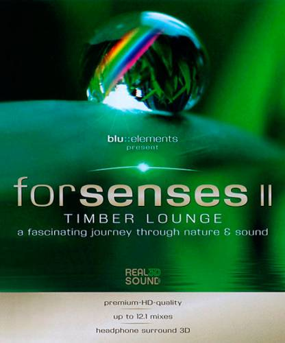Для чувств 2 / Forsenses II (2011) BDRip 720p