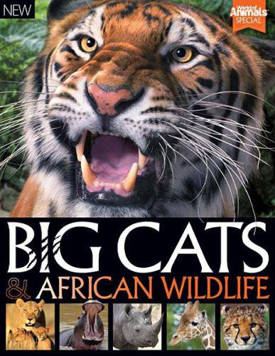 World Of Animals. Book Of Big Cats And African Wildlife. 2nd Edition