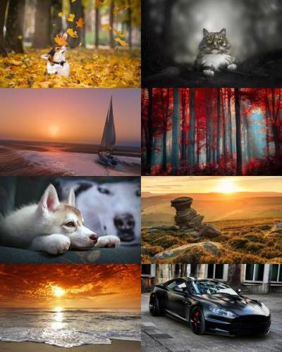 Wallpapers Mix №730
