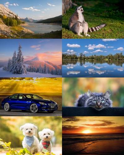Wallpapers Mix №733