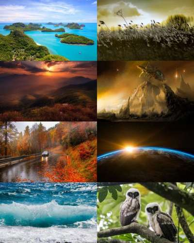 Wallpapers Mix №804
