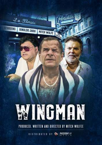 Напарник / WingMan (2020) WEB-DLRip